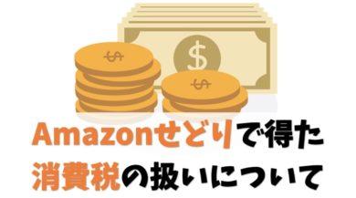 Amazonせどりで得た消費税の扱いについて【納税の要否を解説します】