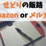 【分かりやすく比較】せどりはamazonとメルカリどちらが有利?